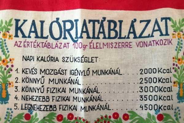 2021. ÁPRILIS HÓNAP MŰTÁRGYA - KALÓRIATÁBLÁZATOS FALVÉDŐ
