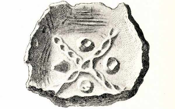 11.kép