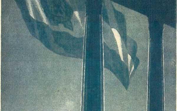 4.kép